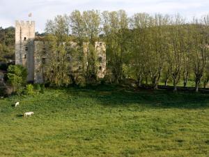 Location gîte, chambres d'hotes Château d'Esparron dans le département Alpes de haute provence 4