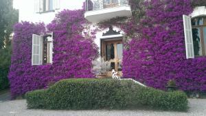 Resort Villa San Luca CITR8031 - AbcAlberghi.com