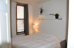 Comfortable 1 Bedroom Gem in Chinatown Lil Italy