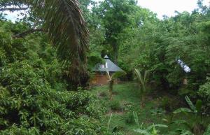 Alya Eco-Lodging AND Yoga -- Casita 1, Nosara