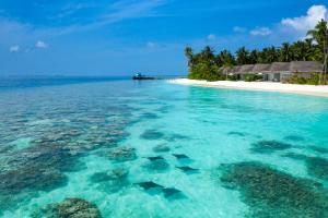 Baglioni Resort Maldives (28 of 70)