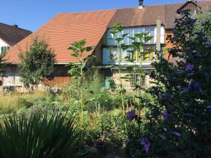 spacious 3 room house with garden - Hotel - Hallau