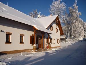 Villa Victoria - Accommodation - Lipno