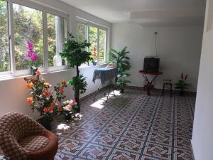 Гостевой дом Флора