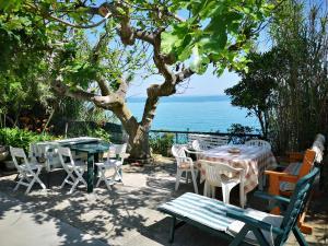 vacanze al Mare appartamento in villa - AbcAlberghi.com