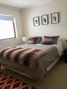 Valle Nevado - Apartment