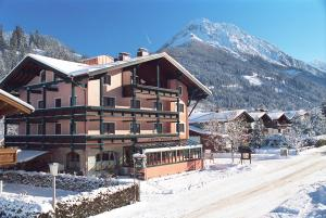 obrázek - Hotel Alpina