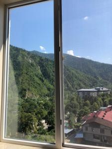 Borjomi-Likani Premium Apartments, Ferienwohnungen  Bordschomi - big - 39