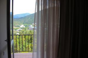 Borjomi-Likani Premium Apartments, Ferienwohnungen  Bordschomi - big - 57