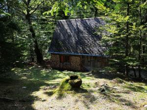 Cozy Private Cabin in the heart of Triglav National Park