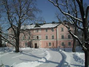 Schlosshotel Zamek Zdikov, Hotely  Zdíkov - big - 17
