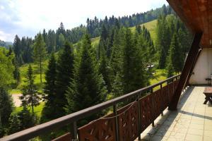 Ostoja Górska Koninki, Resorts  Niedźwiedź - big - 15
