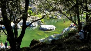 New!Stellaria,appartamento in montagna panorama stupendo-Sardegna)