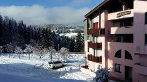 Appartement dernier étage au pied des pistes HIRMENTAZ - Hotel - Bellevaux-Hirmentaz