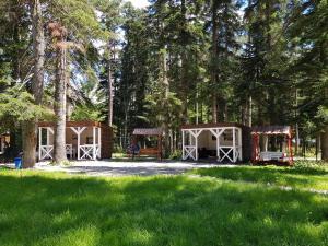 Ecohotel AURA - Hotel - Arkhyz