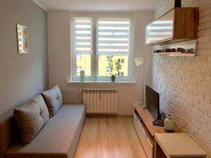 Scandinavia apartment
