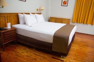 DM Hoteles Mossone - Ica, Hotely  Ica - big - 6