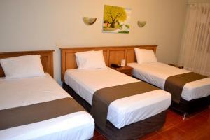 DM Hoteles Mossone - Ica, Отели  Ика - big - 33