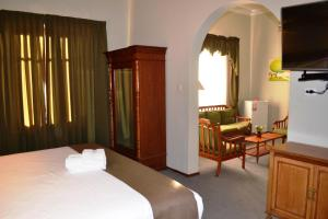 DM Hoteles Mossone - Ica, Отели  Ика - big - 13