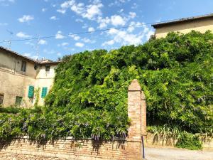 The Terrace Apartment - AbcAlberghi.com