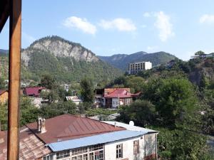 Irakli's Guest House, Apartmány  Bordžomi - big - 10