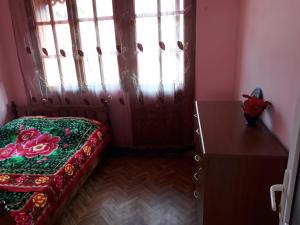 Irakli's Guest House, Apartmány  Bordžomi - big - 6