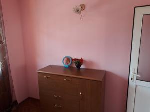 Irakli's Guest House, Apartmány  Bordžomi - big - 17