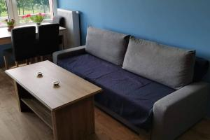 Modern Deluxe Apartment in Bronowice