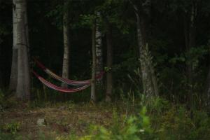 Pole namiotowe u stóp natury