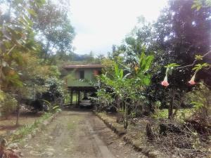 Cold River Cabin, Rivas