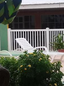 Jade's Oasis, Alloggi in famiglia  Oranjestad - big - 16