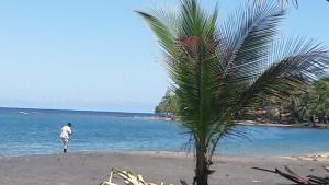 Tropical Paradise Puerto Viejo