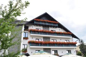 Vila Seva - Hotel - Vatra Dornei