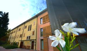 Hostel Sidro - Sveta Ana