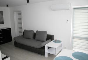 Apartament Miedzianka