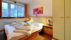 SKI - Apartment - Rokytnice Nad Jizerou