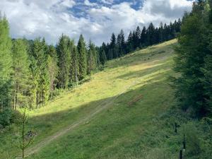 Ostoja Górska Koninki, Rezorty  Niedźwiedź - big - 37