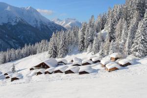 Alp Chalet Appartement, Ferienwohnungen  Kappl - big - 2