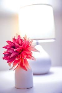 obrázek - Modern Comfy Apartment@Southern Cross