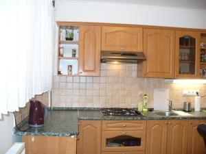 Apartman Nadezda, Appartamenti  Karlovy Vary - big - 6