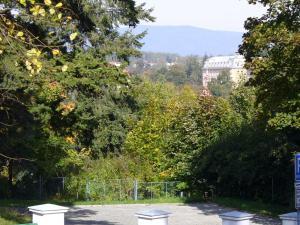 Apartman Nadezda, Appartamenti  Karlovy Vary - big - 14