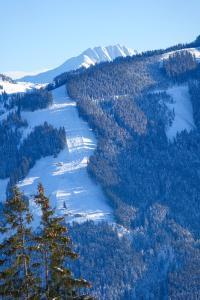 Residenz Gamper - Apartment - Brixen im Thale