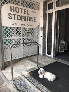emblème de l'établissement Hotel Storione