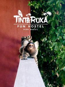 Tinta Roxa Fun Hostel