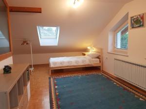 Apartment Venko