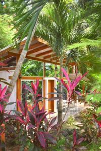 Fuego Lodge, Hotely  Pláž Santa Teresa - big - 30