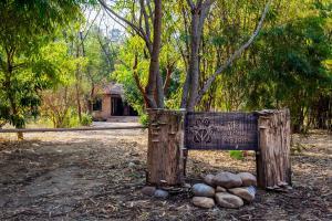 Jim's Jungle Retreat (1 of 59)