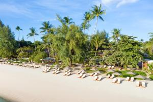 SALA Samui Choeng Mon Beach Resort (9 of 76)