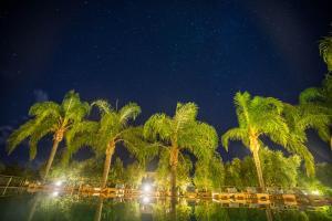 Zoe Resort (18 of 175)