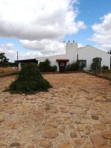 Monte Pisco Ferreira, Elvas